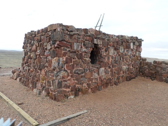 Tenth century Agate House, made from petrified wood
