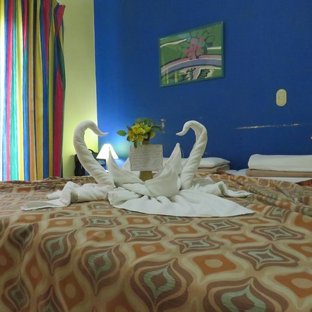 Hotel Los Delfines: Every day we arrived back at our room, there was a fresh surprise. Beautiful. We felt so welcomed.
