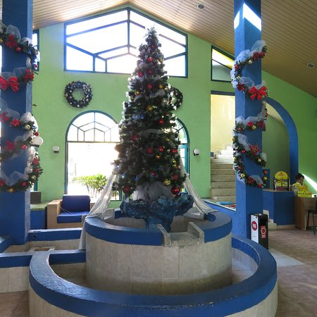 Hotel Los Delfines: All done up for Christmas