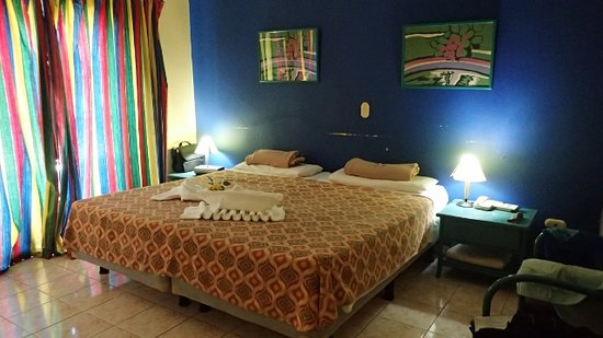 Hotel Los Delfines: Our maid made our room  'cute'.