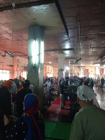 Tourist Hero: Golden temple tour
