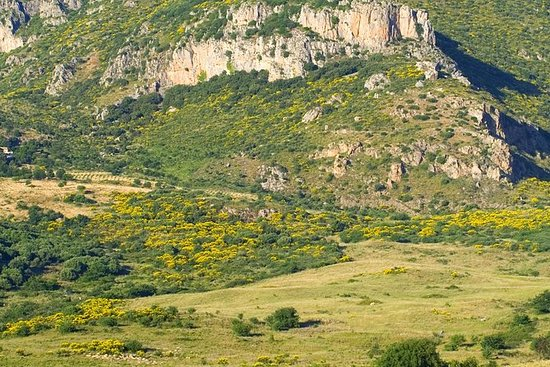 シチリア村&リコッタテイスティング - チェファルからのランチを含む