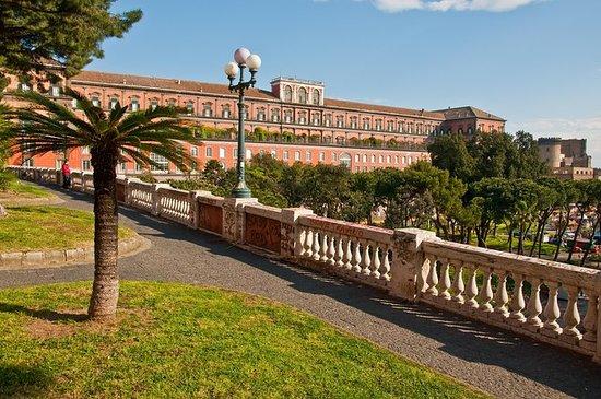 Napoli Shore Excursion: Napoli City...