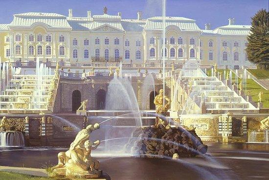 聖彼得堡海岸遊覽:免簽證一日遊