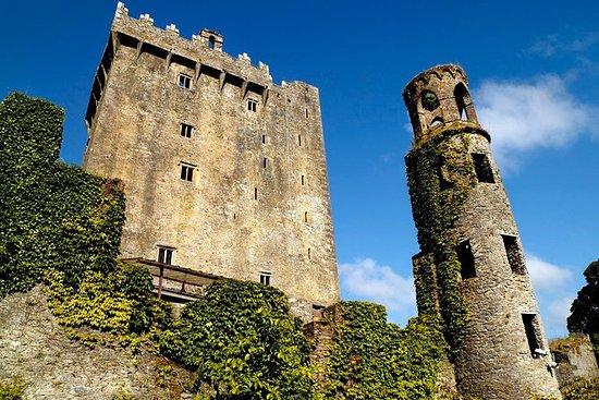 Cork Shore Excursion: Cork Tour