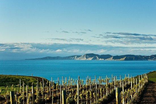 Excursión por la costa: Blenheim Wine...