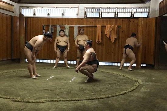 Excursión privada por Asakusa, el...