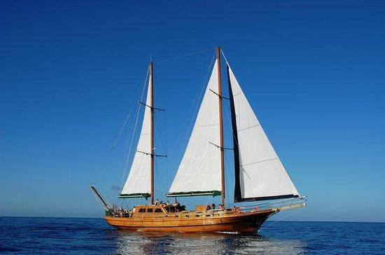 Bootstour vor Gran Canaria mit einem...