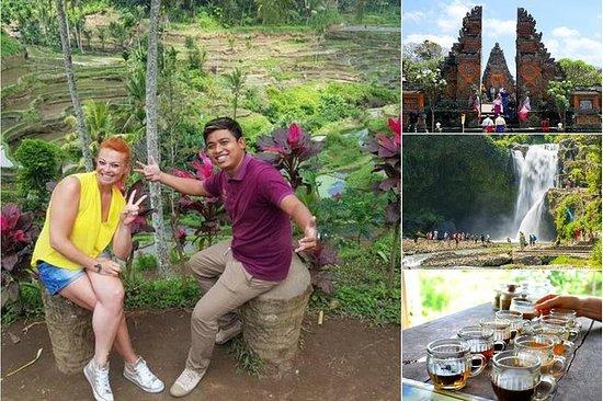 Escursione a Terra: il meglio di Bali