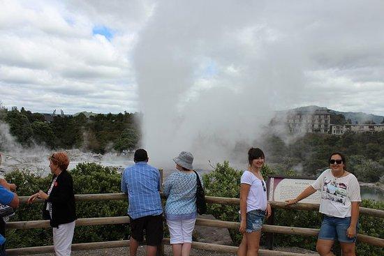 Tauranga Shore Excursion: Maori...