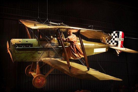 Excursão Terrestre Picton: Wings of...