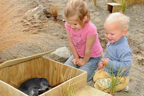 Ecoworld New Zealand tour from...