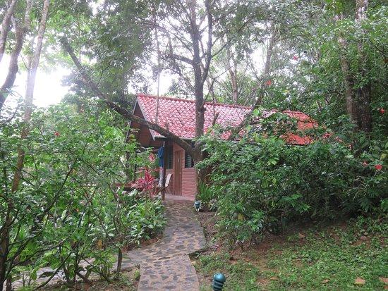 Black Rock Lodge: Our cabin in the jungle