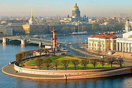 1天圣彼得堡私人豪华海岸游览