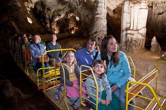 Excursion à la grotte de Postojna
