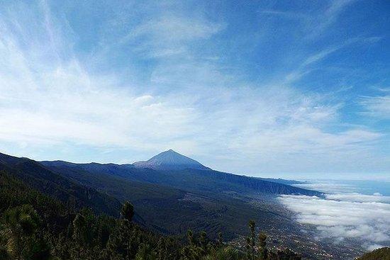 Kustexcursie in Tenerife over land en ...