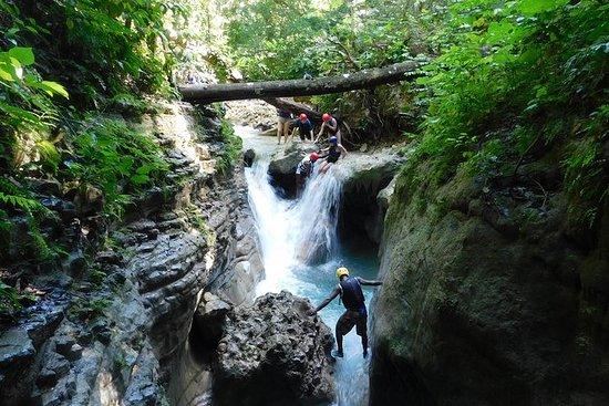 Excursión en tierra: las 27 cascadas...
