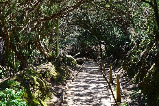 Tour de la Reserva de la Biosfera de...