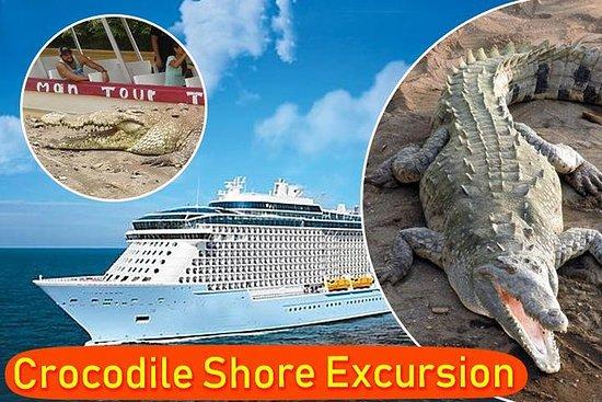Shore Excursion Crocodile Safary og...