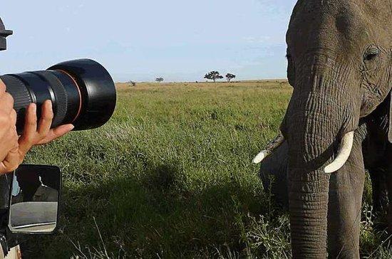 5 jours Big Five Safaris