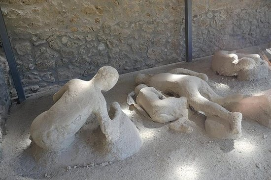 Private Day trip Tour to Pompeii and...