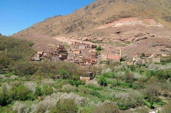 Atlasfjellene og Berber Villages Trek...