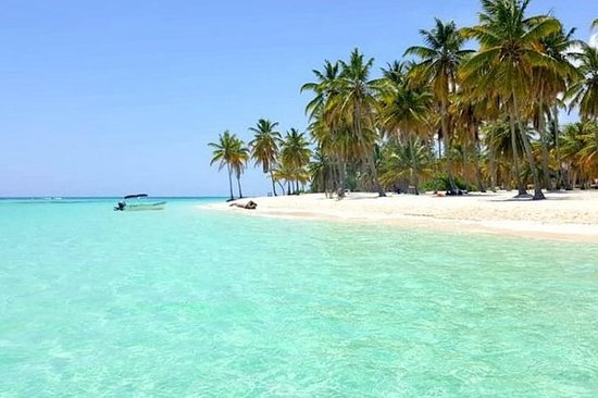All-Inclusive Saona Island Full Day...