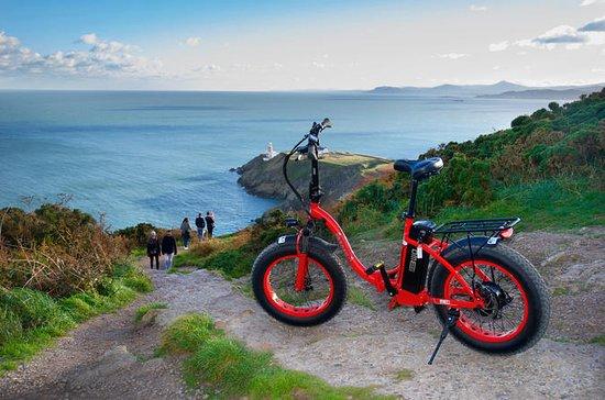 Tour panoramico in bici elettrica di