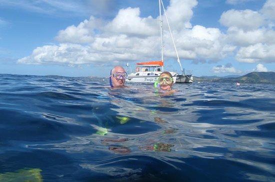 Snorkel & Kayak Cruise