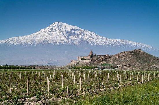 El gusto y el olor de armenia