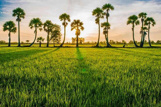 Провинция Жанг, Вьетнам: An Giang