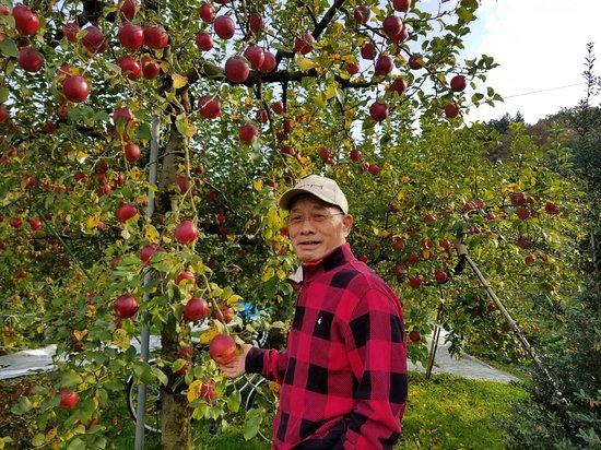 Fujita Kanko Apple Farm