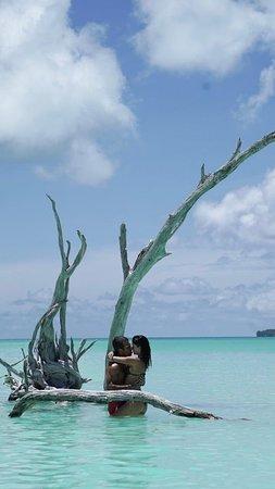 Tetiaroa, Polinesia francese: Na melhor praia, com a melhor companhia
