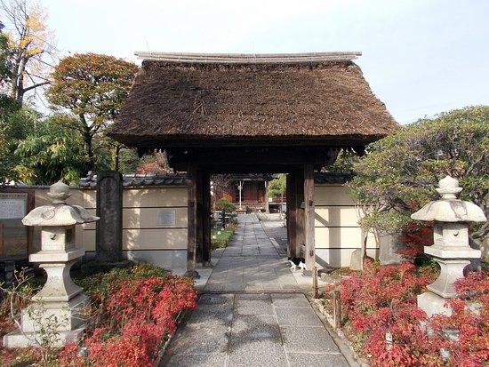 Tamonji Temple: 多聞寺の山門(茅葺き)