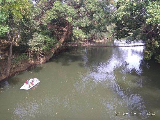 Foto de Nisargadhama Forest