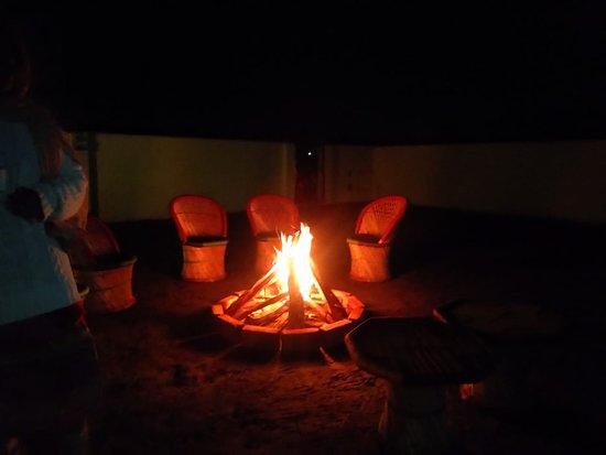 Rajaji National Park, הודו: Bornfire