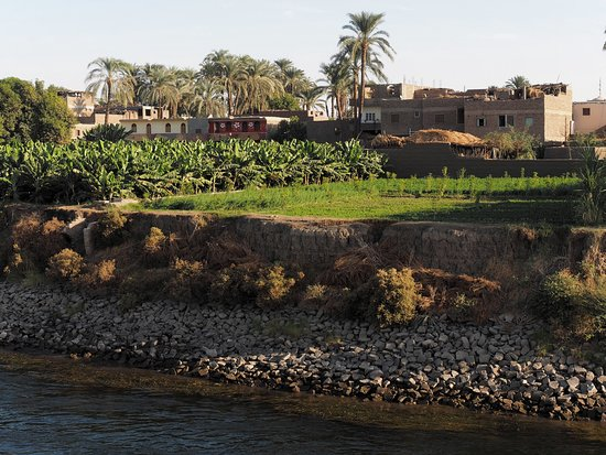 Aswan Individual - Daily Tour: Sceneries along the Nile - Bananas plantation and typical local houses