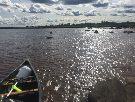 Ilomantsi, Finlandia: Sunny day