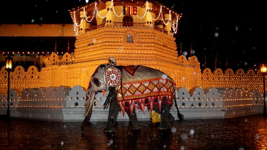 Travel With T : Festival in Kandy