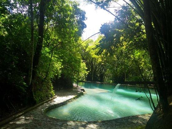 State of Alagoas: Reserva ecológica de Santa Tereza. Um perfeito lugar para quem quer desfrutar da calmaria da natureza!!