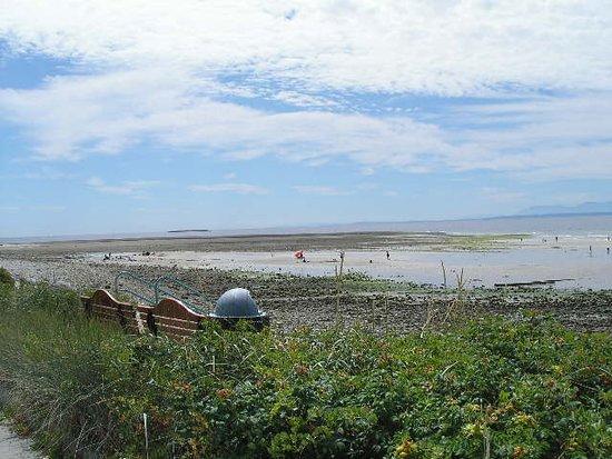 Beach Area (Low Tide) Davis Bay