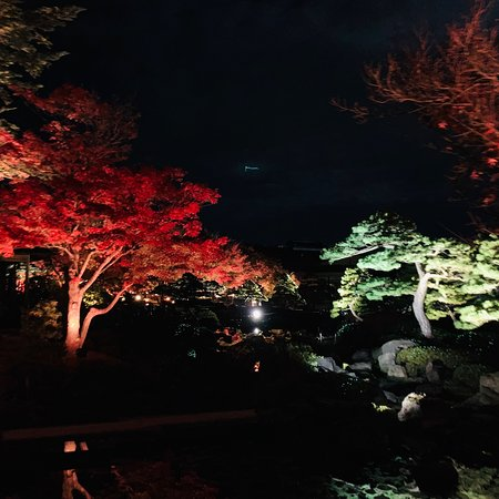 Its was amazing to see tha autumn leaves at night at Yuushien Graden matched by colorful lights and illuminations.