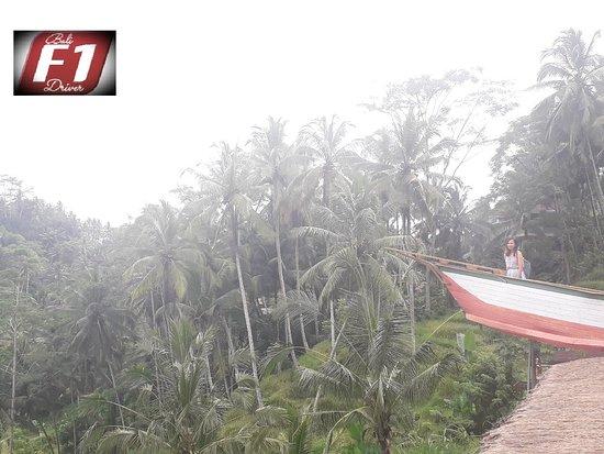 Bali FirstOne Driver: Tegalalang rice terrace.