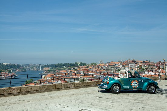 Peter`s beetle Porto Tours