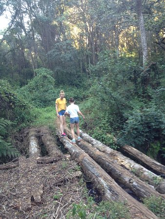 Pakachere Backpackers: Hiking the nature trail (1,5-2hrs)