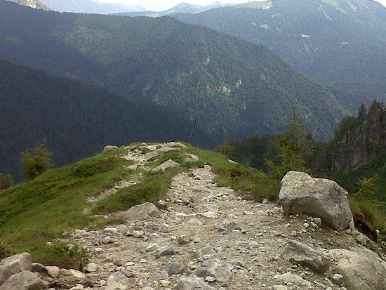 Pieve Tesino, Италия: Lungo i percorsi di montagna