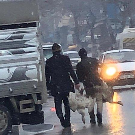 Kars, Turkey: Kisa gunden kalan hatiralar