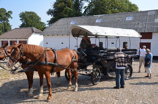 Kolding, Dinamarca: Hesetur i det skønne område.