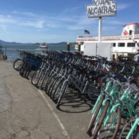 Fleet of bikes