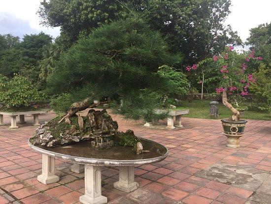 孤傲矗立香江畔的古寺